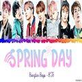 عکس لیریک آهنگ Spring day از BTS..♫︎❥︎
