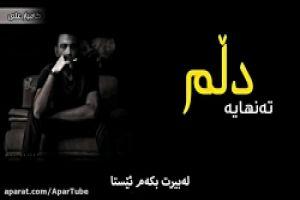 عکس آهنگ جدید - دلم تنهاست ، محسن چاوشی